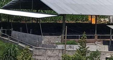 Darurat Pencemaran Air Dusun Nanasan Desa Balesari