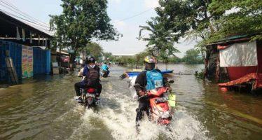 Banjir sebagian wilayah gresik tutup beberapa ruas jalan menuju lamongan,puluhan peternak bandeng rugi ratusan juta