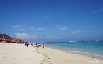 Kerepotan Menginformasikan Ke Agen Tour Wisata Bali Disorot Pengusaha Pariwisata
