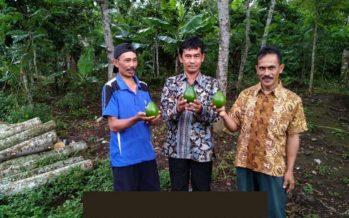Sosialisasi Pelaksanaan APBDesa 2019 Melalui Aplikasi Siskeudes 2.01.