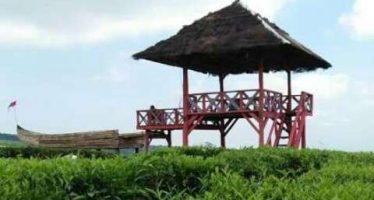 Bangun Kerjasama Wisata, PTPN XII Dijadikan Destinasi Wisata Legenda