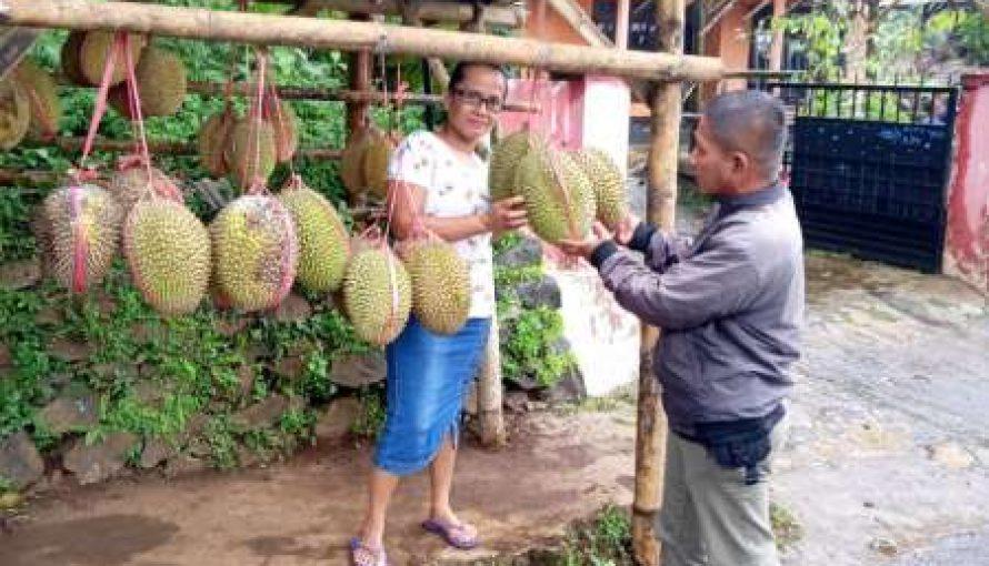 """Bu Ana"" Siapkan Stok Buah Durian Hingga Jelang lebaran"