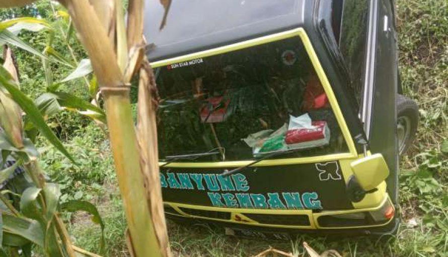 Diduga Power Stering Tak berfungsi, Mobil Pick up Masuk Jurang